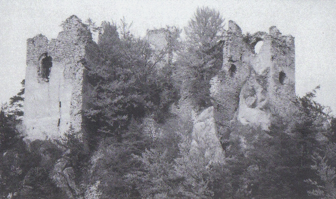 Kam na výlet: Hričovský hrad
