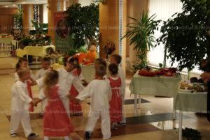 Výstava ovocia, zeleniny, kvetov a výrobkov z výpestkov